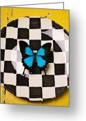 Still Life Greeting Cards - Checker plate and blue butterfly Greeting Card by Garry Gay