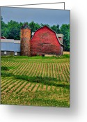Cornfield Greeting Cards - Checkered Greeting Card by Emily Stauring