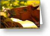 Barn Images Greeting Cards - Cheese Greeting Card by Cheryl Young