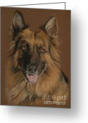 Animalportrait Pastels Greeting Cards - Chelsea - German Shepherd Greeting Card by Sabine Lackner