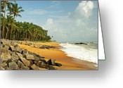 Coconut Greeting Cards - Chembarika Beach, Kasargod Greeting Card by Rajesh Vijayarajan Photography
