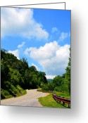 Nantahala Forest Greeting Cards - Cherahala Skyway Bend Greeting Card by Amanda Vouglas
