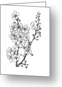 Tree Drawings Greeting Cards - Cherry Blossems Greeting Card by Christy Beckwith