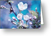 Textured Floral Greeting Cards - Cherry Blossoms Greeting Card by Viaina