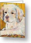 Pet Portrait Artists Greeting Cards - Chester Greeting Card by Pat Saunders-White