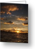 Warm Greeting Cards - Chicago Skyline Sunset Greeting Card by Steve Gadomski