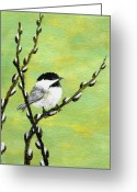 Pussy Willow Branches Greeting Cards - Chickadee On Pussy Willow - Bird 1 Greeting Card by Kathleen McDermott