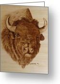 Wildlife Pyrography Greeting Cards - Chief Greeting Card by Jo Schwartz