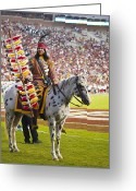 Renegade Greeting Cards - Chief Osceola and Renegade on Bobby Bowden Field Greeting Card by Frank Feliciano