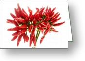 Chili Peppers Greeting Cards - Chili peppers Greeting Card by Fabrizio Troiani