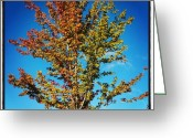 Sky Greeting Cards - Chill Is In The Air, And The #fall Greeting Card by Adam Romanowicz
