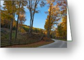 Country Dirt Roads Photo Greeting Cards - Chillin on a Dirt Road Greeting Card by Bill  Wakeley