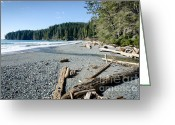 Sea Greeting Cards - CHINA WIDE china beach juan de fuca provincial park vancouver island BC canada Greeting Card by Andy Smy