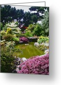 Karo Evans Greeting Cards - Chinese Garden in Jersey Greeting Card by Karo Evans