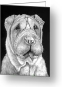 Ethnic Painting Greeting Cards - Chinese Sharpei Greeting Card by Enzie Shahmiri