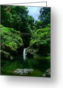 Hawaiian Pond Greeting Cards - Chings Pond  Greeting Card by Ken Smith