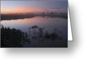 Santa Cruz Valley Greeting Cards - Chiquitania Laguna in the the evening. Republic of Bolivia. Greeting Card by Eric Bauer