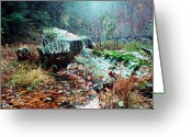 Stafford Greeting Cards - Chopawamsic Creek Misty Autumn Day Greeting Card by Thomas R Fletcher