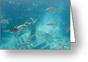 Coral Reef Greeting Cards - Christ Of The Deep Statue In A Coral Greeting Card by Mike Theiss