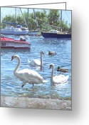 Swans Painting Greeting Cards - Christchurch Harbour Swans And Boats Greeting Card by Martin Davey
