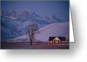 Decoration And Ornament Greeting Cards - Christmas Lights Outline A Lone House Greeting Card by Richard Olsenius