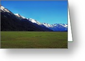 Whittier Route Greeting Cards - Chugach Mountains Green Plain Greeting Card by Thomas R Fletcher
