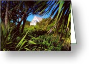 Rain Forrest Greeting Cards - Church on the Hill Greeting Card by Alan Turley