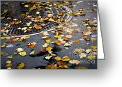 Grid Greeting Cards - City fall Greeting Card by Elena Elisseeva