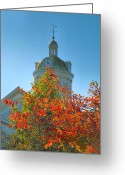 City Hall Greeting Cards - City Hall Dome And Tree  Greeting Card by Steven Ainsworth
