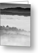 Bw Pyrography Greeting Cards - City under the Clouds Greeting Card by Radu Aldea