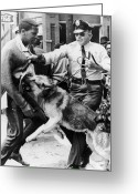 Carousel Collection Greeting Cards - Civil Rights, 1963 Greeting Card by Granger