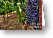 Fall Photographs Greeting Cards - Classic Cabernet Greeting Card by Mars Lasar