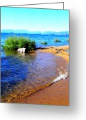 Tahoe Greeting Cards - Clear Waters Greeting Card by Leah Moore