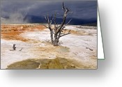 Storm Cloud Greeting Cards - Clearing Storm At Mammoth Hot Springs Greeting Card by Photo by Mark Willocks