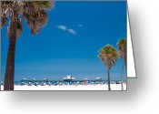 Palm Trees Greeting Cards - Clearwater Beach Greeting Card by Adam Romanowicz