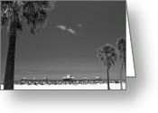 Palm Trees Greeting Cards - Clearwater Beach BW Greeting Card by Adam Romanowicz