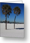 Florida Beaches Greeting Cards - Clearwater Beach Greeting Card by Carol Groenen