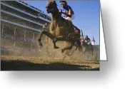 Churchill Downs Greeting Cards - Close Action Shot Of Horses Racing Greeting Card by Melissa Farlow