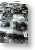 Music Glass Art Greeting Cards - Close up of the Forth River Greeting Card by Sarah King