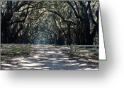 Driveways Greeting Cards - Closer To Home Greeting Card by Jim Goldseth