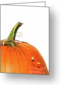 Pumpkin Farm Greeting Cards - Closup of pumpkin with bits of straw  Greeting Card by Sandra Cunningham