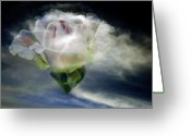 Clayton Photo Greeting Cards - Cloud Rose Greeting Card by Clayton Bruster