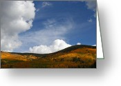 Elizabeth Rose Greeting Cards - Clouds and Golden Aspen Greeting Card by Elizabeth Rose
