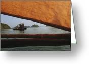 Oceans And Seas Greeting Cards - Cluster Of Kabangs On The Water Greeting Card by Nicolas Reynard