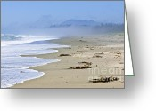 Misty Greeting Cards - Coast of Pacific ocean in Canada Greeting Card by Elena Elisseeva