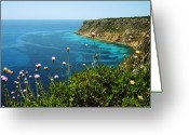 Lustrous Greeting Cards - Coast Greeting Card by Oliver Johnston