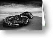 Shipwreck Greeting Cards - Coast Greeting Card by Svetlana Sewell