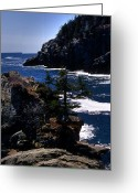 Surf Photos Art Greeting Cards - Coastal Maine Greeting Card by Skip Willits