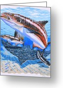 Hatteras Greeting Cards - Cobia on Rays Greeting Card by Carey Chen