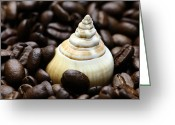 Dekoration Greeting Cards - Coffee beans snail Greeting Card by Falko Follert
